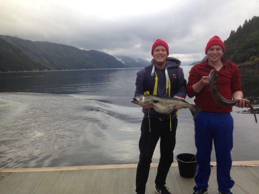 Pollack Norwegen Leng angeln Boot