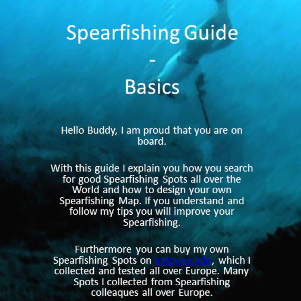 Spearfishing Basic Guide Anleitung Spots Karten Spot Fischen Angeln Fishing Harpune lernen learn Tutorial Speargun GER