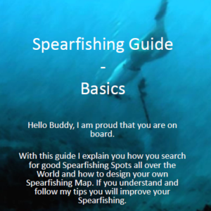 Spearfishing Guide Basic Tutorial Anleitung