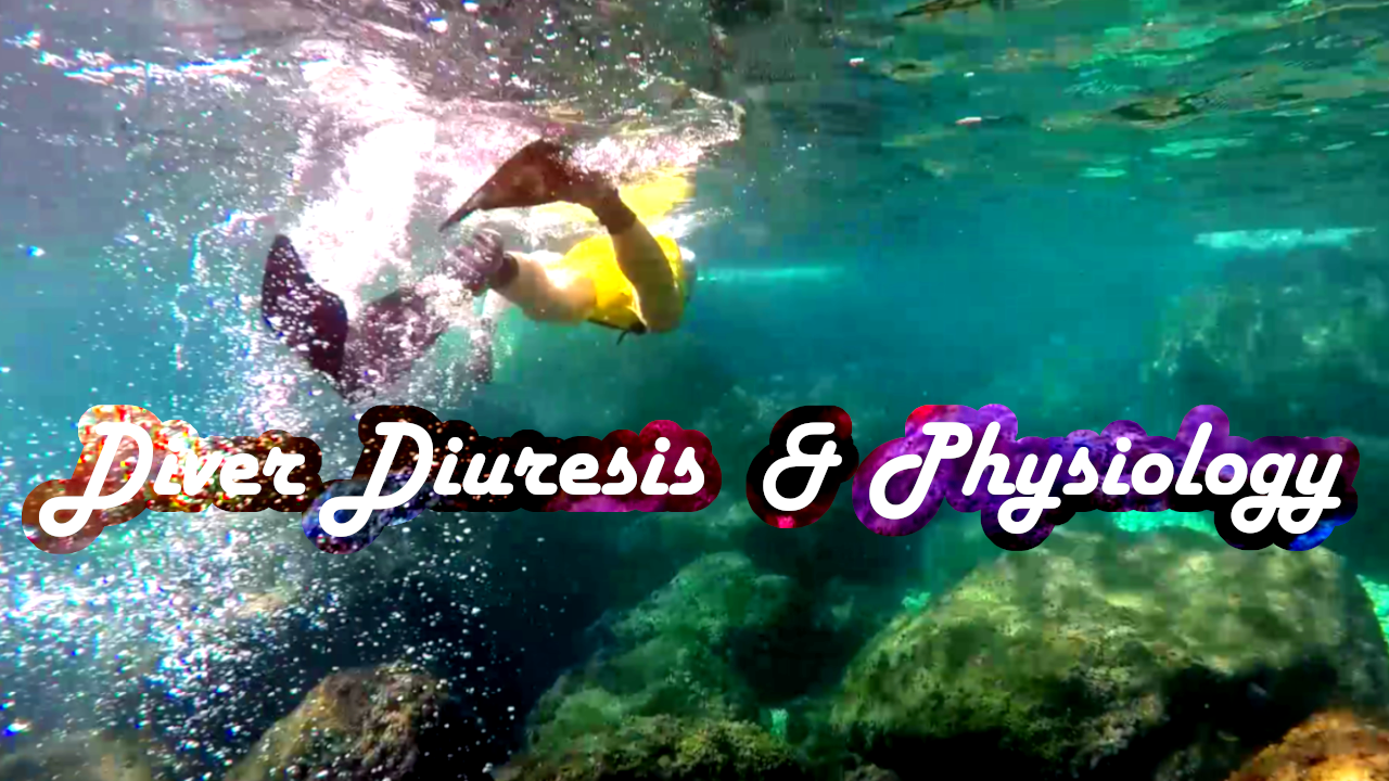 Diver Diuresis Urine Urin Physiology Diving Alcohol Dive Diet Food eat before Diverdiuresis