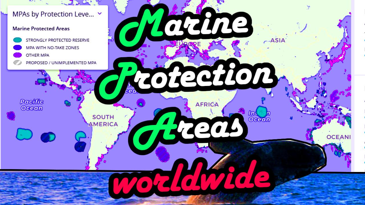 Marine Protected Areas Meeresschutzgebiete Karte Weltweit worldwide Map